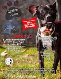 petco black friday mrfrs 2016 cat calendar u2014 merrimack river feline rescue society