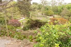 Rock Garden Perennials by Sneak Preview Of Rock Garden Rejuvenation At Rbg Burlington Ontario
