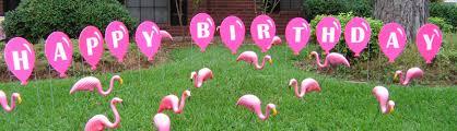 pink flamingos flamingos 2 go