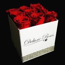 forever roses forever roses örök rózsaboxok