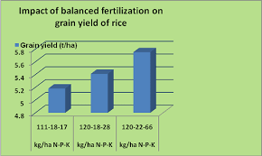 rice crop guide plant nutrition