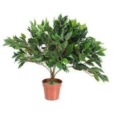 indoor artificial trees nz buy new indoor artificial trees