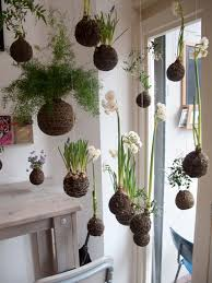 mini plants 24 of the most beautiful ideas on indoor mini garden to collect