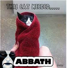 Abbath Memes - abbath for a cat metal bastards