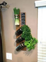 best herb gardens herb garden indoor best herbs to grow indoors