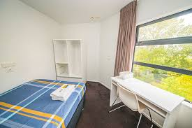 new zealand room rent princeton apartments auckland budget apartments accommodations