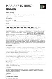 Sample Resume Business Development by Non Profit Resume Samples Visualcv Resume Samples Database