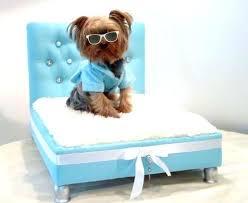 Pet Canopy Bed Canopy Bed Initially Canopy Bed Uk Lifeunscriptedphoto Co