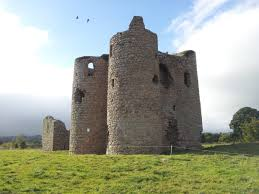 Historical Castles by Historic Buildings Of County Carlow