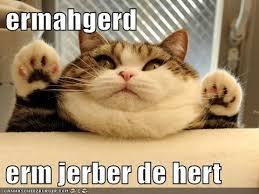 Ermahgerd Animal Memes - ermahgerd jabba the hutt kitteh cat meme makes my life may the