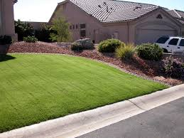 considering overseeding here are 10 reasons to skip that winter lawn