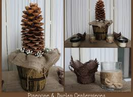 used wedding decorations 32 design used rustic wedding decor garcinia cambogia home