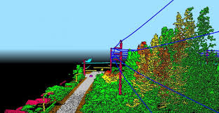 New York vegetaion images New york power authority contracts for vegetation analysis tdworld jpg