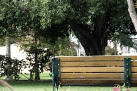 free stock photo of back of wooden park bench