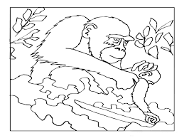 ape coloring pages getcoloringpages com