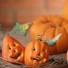 cute halloween backgrounds halloween pumpkin wallpaper wallpapersafari