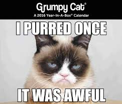 Frown Cat Meme - happy birthday meme grumpy cat 4birthday info