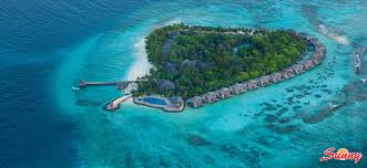 vivanta by taj coral reef maldives luxury hotel and resort booking
