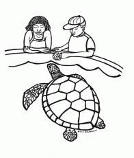 franklin turtle coloring pages 31 free printable coloring