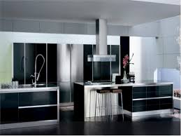 Modern Kitchen Cabinet Designs by Kitchen Snazzy Modern Kitchen Cabinet Doors Stylish Stuff