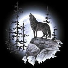 aliexpress com buy animal night wolf diy 5d diamond mosaic full