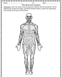 coloring pages jessica name muscular system coloring pages ebcs ab3db72d70e3