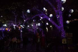 Christmas Light Balls For Trees by Christmas Lights Diversions La