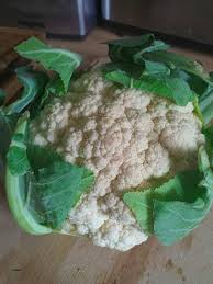 cuisiner les feuilles de chou fleur cuisine awesome cuisiner les feuilles de chou fleur cuisiner les
