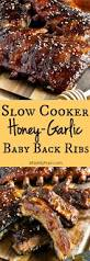 slow cooker honey garlic baby back ribs a family feast