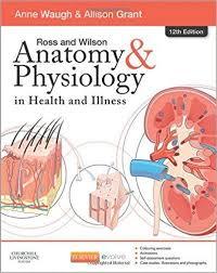 Human Anatomy Textbook Pdf Ross And Wilson Anatomy U0026 Physiology 12th Edition Pdf Anatomy