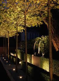 Outdoor Lighting Effects Uplighting Luciano Giubbilei Road Garden Ideas