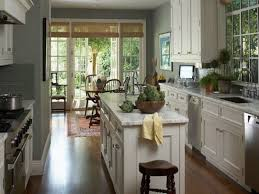 Kitchen Cabinet Color Ideas with Kitchen Classy Kitchen Cupboard Paint Cabinet Color Ideas