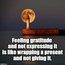 Gratitude Meme - feeling gratitude and not expressing it is like wrapping a prese