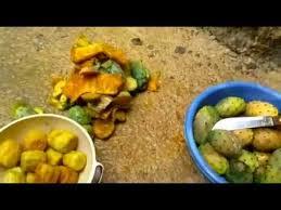 comment cuisiner des figues comment manger des figues de barbarie الهندي ة كرموس النصارة