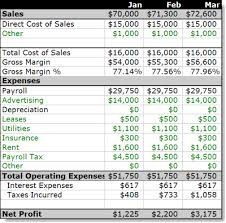 Project Profit And Loss Template Excel Plan As You Go 5 Dressing And Growing Bplans