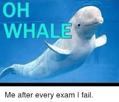 Whaling Meme - oh whale me after every exam i fail meme on me me