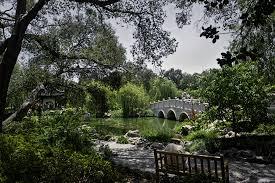 Huntington Botanical Garden by Usa Gardens Pond Bridges California Trees Shrubs Bench Huntington