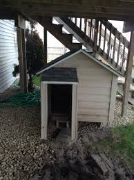 Doghouse For Large Dogs Best Custom Built Spacious Dog House For Sale For Sale In St