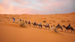 morocco teen trip morocco teen program with bold earth