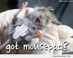 Meme Mouse Pad - got mousepad by ben meme center