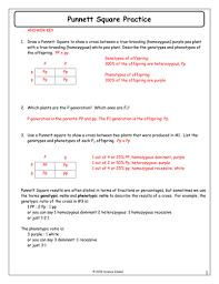 inheritance activities genetics terminology and punnett squares  with punnettsquarepracticeanswerkeydocx from pinterestcom