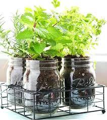 indoor herb garden kits to grow herbs indoors hgtv herb garden indoors hydraz club