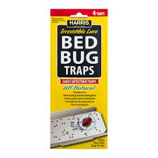 Medicine For Bed Bugs Raid Max Bed Bug U0026 Flea Killer 17 5oz Walmart Com