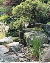 dry stream does double duty fine gardening