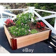 homes outdoor 4x4 feet wooden cedar raised vegetable garden grow