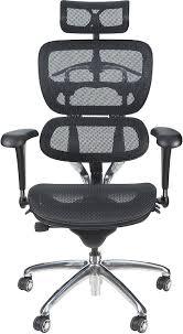 Amazon Ergonomic Office Chair Amazon Merax Ergonomic Office Chair Big And Tall Executive