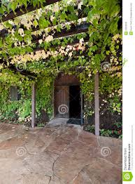 vine covered trellis royalty free stock photo image 22000535