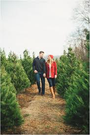 charming christmas tree farm engagement session christmas