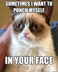 Your Face Meme - sometimes i want to punch myself cat meme cat planet cat planet