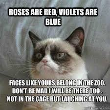 How To Make Good Memes - she is good at rhyming 14 hilarious grumpy cat memes that will